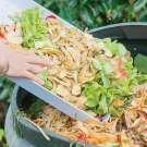 Statistiques mondiales sur le gaspillage alimentaire